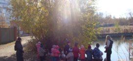 «Осенняя познавательная прогулка»